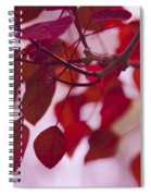 Red Leaves - Euphorbia Cotinifolia - Tropical Smoke Bush Spiral Notebook