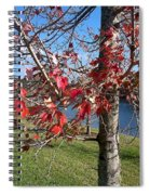 Red Leaves Spiral Notebook