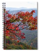 Red Leaves In The Blueridge Spiral Notebook