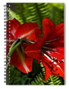 Red Lilies For Spring Spiral Notebook