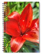 Red Lily 2 Spiral Notebook