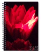Red Lily At Night Spiral Notebook
