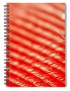 Red Lined Spiral Notebook