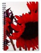 Red Lullaby Spiral Notebook