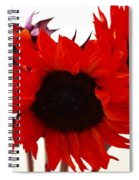 Red Lullaby No2 Spiral Notebook