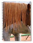 Red Mane Spiral Notebook