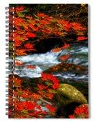 Red Maple Stream  Spiral Notebook