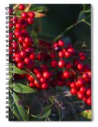 Red Nandina Berries - The Heavenly Bamboo Spiral Notebook