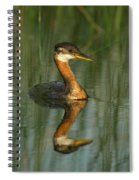 Red-necked Grebe Spiral Notebook