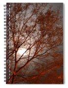 Red Oak At Sunrise Spiral Notebook