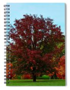 Red Oak In Loose Park Spiral Notebook