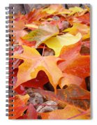 Red Orange Autumn Leaves Art Prints Spiral Notebook