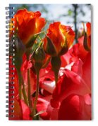 Red Orange Roses Art Prints Floral Photography Spiral Notebook