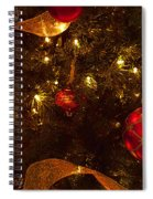 Red Ornament And Gold Ribbon Spiral Notebook