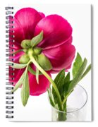 Red Peony Flower Back Spiral Notebook