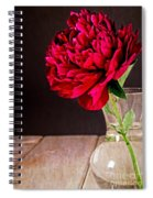 Red Peony Flower Vase Spiral Notebook