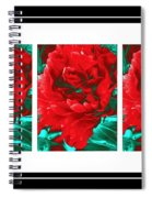 Red Peony Triptych Spiral Notebook