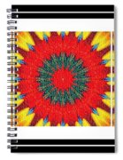 Red Peppered Sunshine - Abstract - Triptych Spiral Notebook