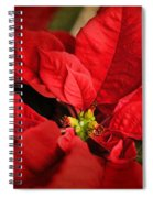 Red Poinsettia 2 Spiral Notebook