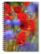 Red Poppies In The Maedow Spiral Notebook