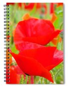 Red Poppy Flowers Art Prints Floral Spiral Notebook