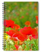 Red Poppy Flowers Meadow Art Prints Spiral Notebook