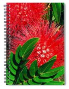 Red Powder Puff Spiral Notebook
