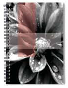 Red Rain Blossom Spiral Notebook