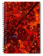 Red Red And Red Spiral Notebook