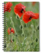 Red Red Poppies 2 Spiral Notebook