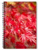 Red Red Red Spiral Notebook
