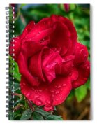 Red Red Rose Spiral Notebook
