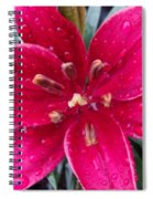 Red Refreshed Lily Spiral Notebook
