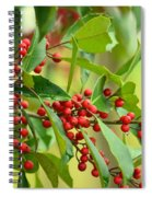 Red Ripe Berries Spiral Notebook