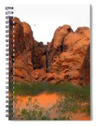 Red Rock Canyon. Spiral Notebook