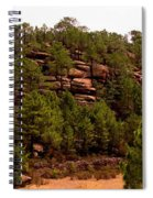 Red Rock Green Forest No3 Spiral Notebook
