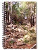 Red Rock Pine Forest Spiral Notebook