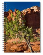 Red Rocks And Tree 1 Spiral Notebook
