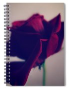 Red Rose Abstract Spiral Notebook