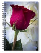 Red Rose And Kale Flower Spiral Notebook