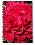 Red Rose Art Prints Big Roses Floral Spiral Notebook