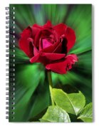 Red Rose Green Background Spiral Notebook
