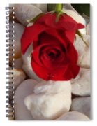Red Rose On River Rocks Spiral Notebook