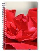 Red Rose Red Rose Spiral Notebook