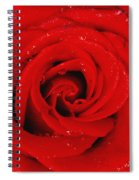 Red Rose With Water Drops Spiral Notebook