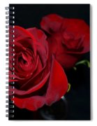Red Roses For A Blue Lady Spiral Notebook