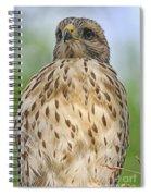 Red Shoulder Fledgling Spiral Notebook