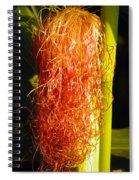Red Silk Spiral Notebook