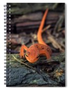 Red Spotted Newt Spiral Notebook