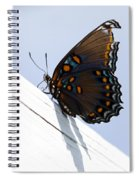Red Spotted Purple Spiral Notebook